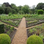 Well designed vegetable garden