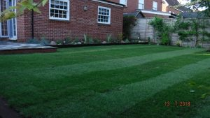 The new, level lawn after turfing