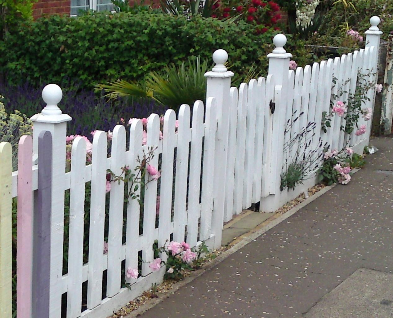 white picket fence, March, Doddington